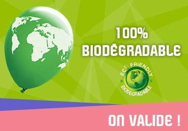 Ballon personnalisé 100% Biodégradable
